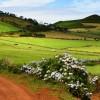 São Miguel – Das grüne Tor zu den Azoren